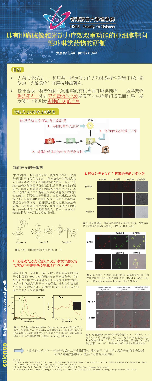 具有肿瘤成像和光动力疗效双重功能的亚细胞靶向性卟啉类药物的研制